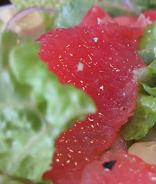 Grapefruit Romaine Red Onion Salad